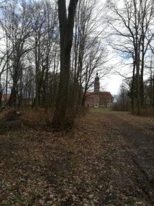 Blick zum Wasserschloss Reinharz vom Schlosspark aus